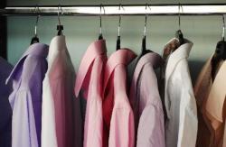 Program camasi