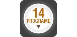 14 programe de preparare