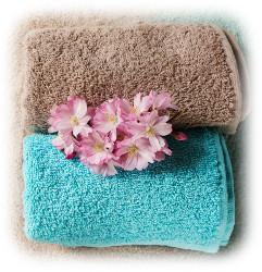 Hygienic Drying